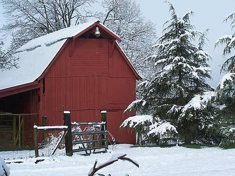 Red Barn in Winter by Kay Reamensnyder