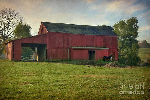 Red Barn with Donkey by Susan Isakson