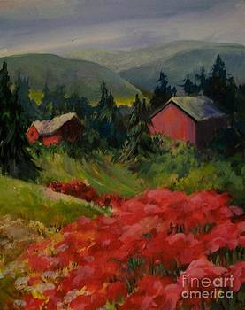 Red Barns by Judith A Smothers