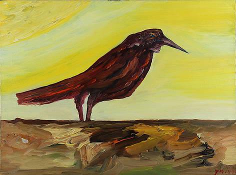 Red Bird by Yaron Ari