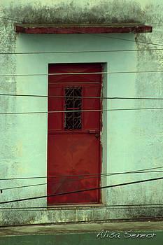 Red Door Close by Alisa Seneor