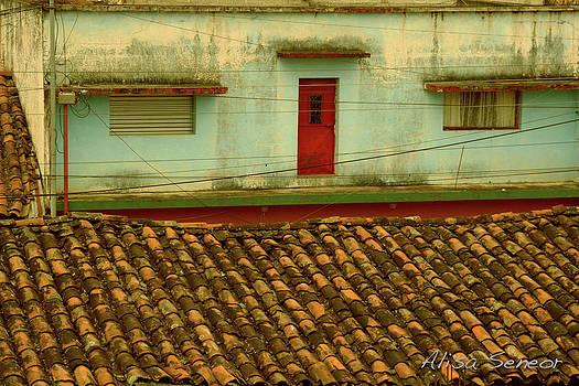 Red Door Far by Alisa Seneor