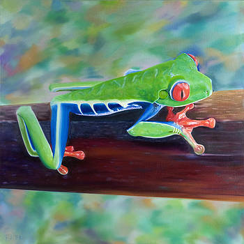 Red-Eyed Tree Frog 2 by Pamela Bell