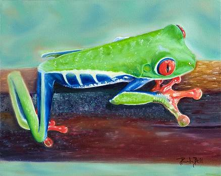 Red-Eyed Tree Frog by Pamela Bell