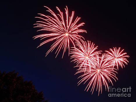 Red Fireworks by NaDean Ribitzki