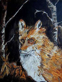 Amalia Jonas - Red Fox Hunting