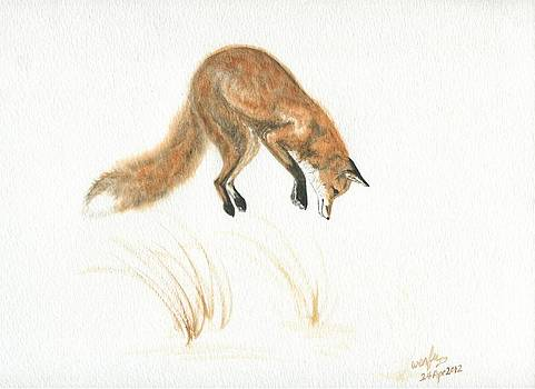 Red fox pouncing by Wenfei Tong