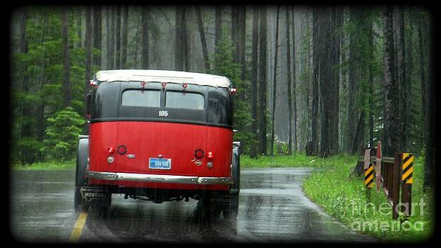 Red in the Rain by Lani PVG   Richmond