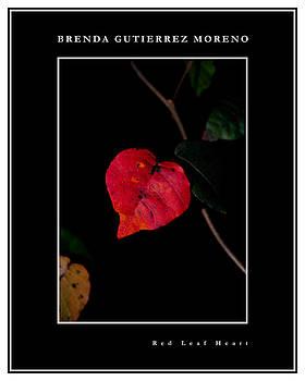 Red Leaf Heart black border by Brenda Gutierrez Moreno