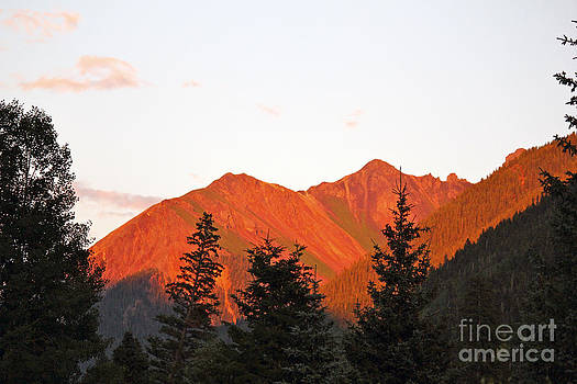 Red Ophir Sunset by Bianca Collins
