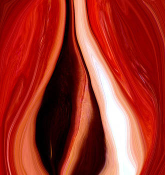 Red Pepper Abstract1 by Linnea Tober