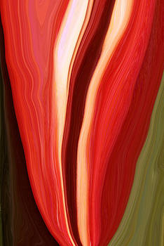 Red Pepper Abstract2 by Linnea Tober
