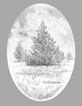 Jim Hubbard - Red Pine