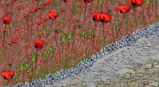 Red Poppies by Mark Stidham