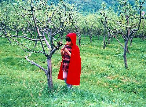 Ion vincent DAnu - Red Riding Hood