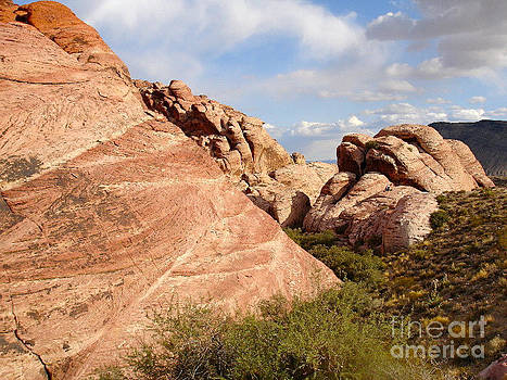 Red Rock by Silvie Kendall