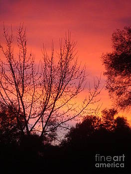 Red Sky At Night... by Catherine DeHart