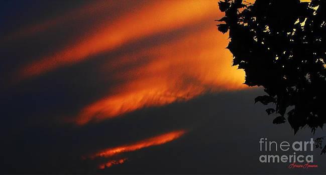 Red Sky by Lorraine Louwerse
