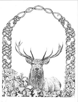 Red Stag with Knotwork by Reppard Powers