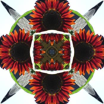 Red Sunflower And Feather by Trina Stephenson