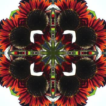 Red Sunflowers by Trina Stephenson