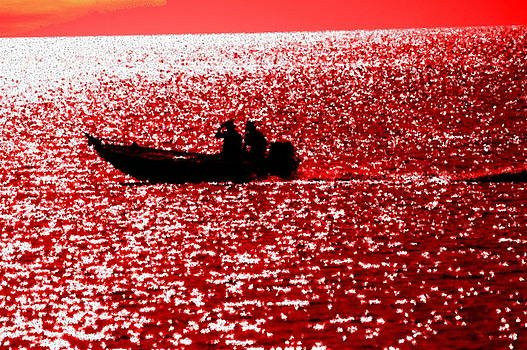 Ronald T Williams - Red Tide