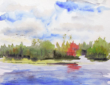 Red tree on lake by TD Wilson