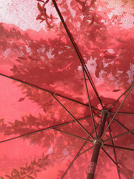 Red Umbrella by Pamela  Corwin