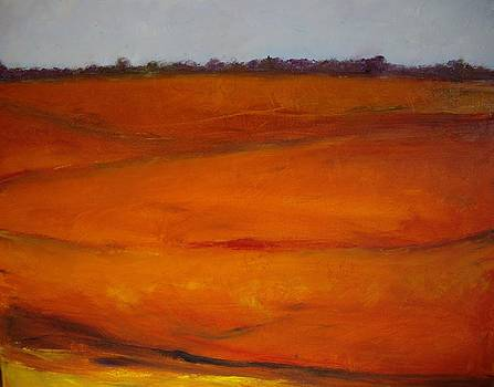 Red Valley by Sharon Ford