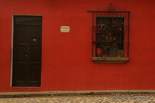 Red Window n Door A by Alisa Seneor