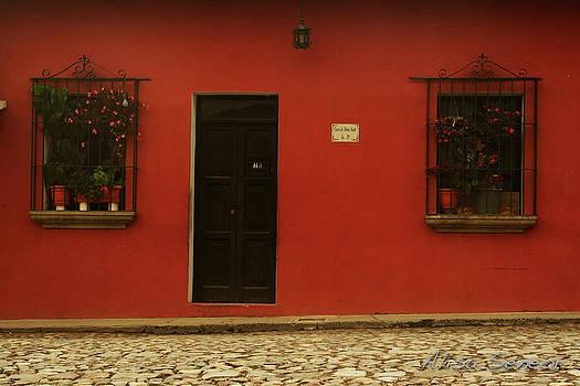Red Windows n Door by Alisa Seneor