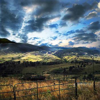 Redsone Canyon by Ric Soulen