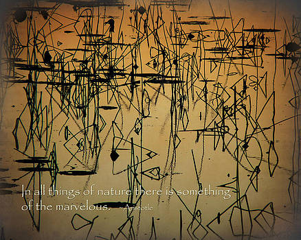 Terry Eve Tanner - Reeds at Sunset Inspirational
