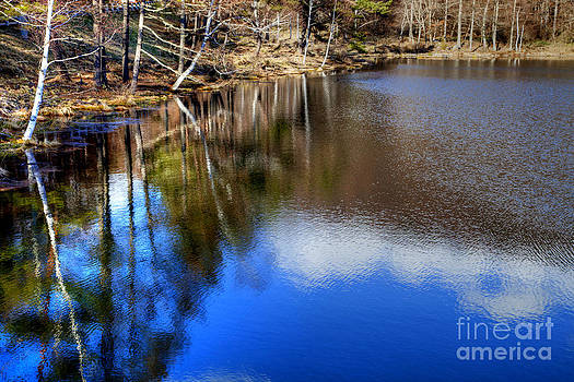 Reflected in the water 3 by Tad Kanazaki