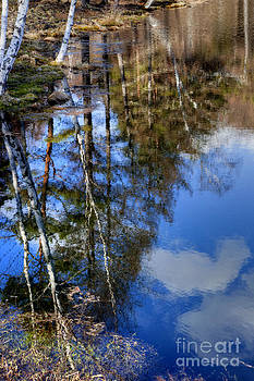 Reflected in the water 4 by Tad Kanazaki