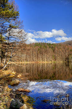 Reflected in the water by Tad Kanazaki