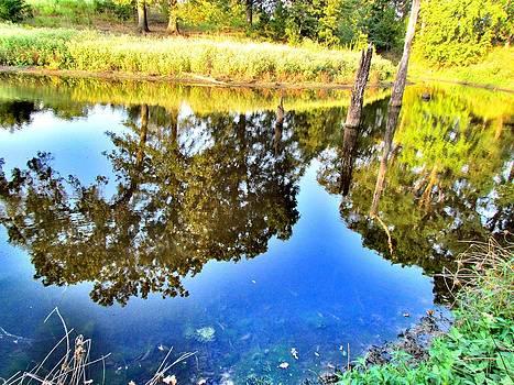 Reflection by Evgeniya Sohn Bearden
