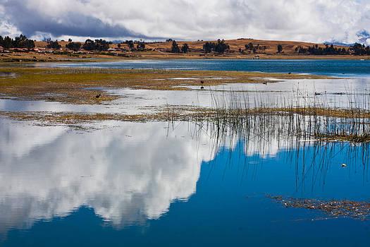 Reflection by Kusi Seminario
