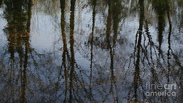 Reflection by Robert Mccarthy