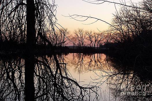 Reflections by Dorrene BrownButterfield