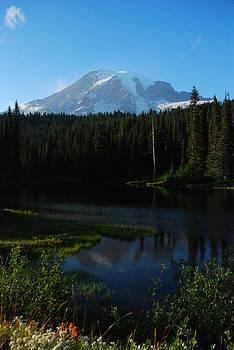 Reflections of Mt. Rainier by Wanda Jesfield