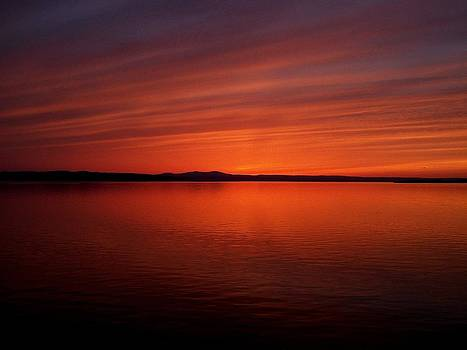 Reflections of Orange and Blue by Jeff Moose