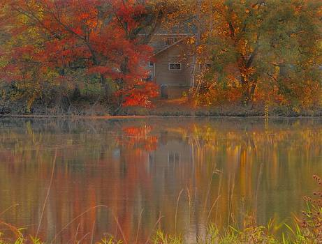 Reflections on Chrystal River by Victoria Sheldon
