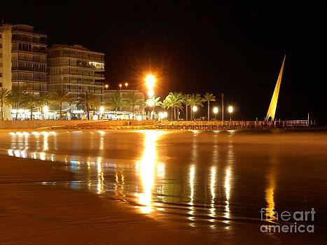 Reflections on the Beach by Alfredo Rodriguez