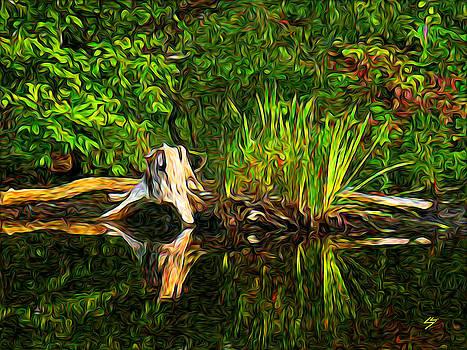 Reflections by Sotiri Catemis