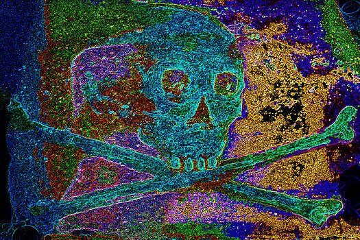 Regal Skull and Crossbones  by Warren Clark