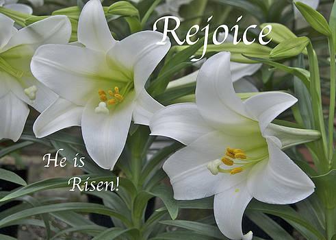 Michael Peychich - Rejoice He is Risen
