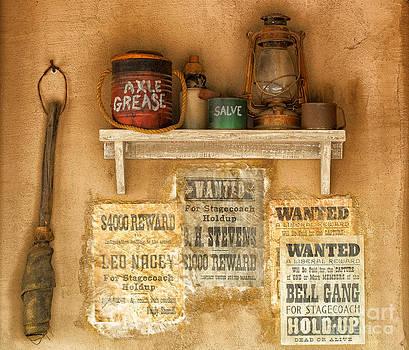 Sandra Bronstein - Relics of the Old West