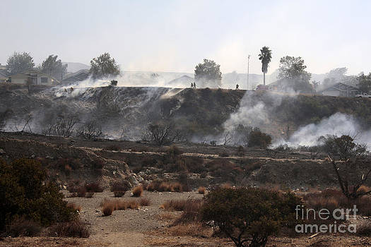 Remnants of a large fire by Nina Prommer