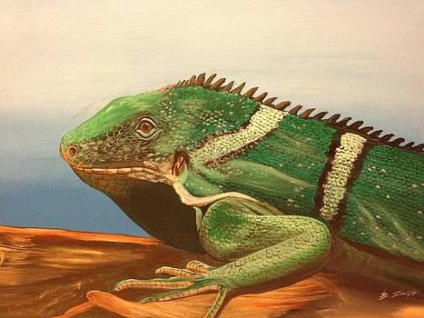 Reptile Iguana by Biren Biren